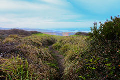 Mendocino California landscape view with ocean arch Royalty Free Stock Photo