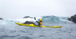 MENDOCINO, CALIFORNIA, USA - JUNE 8. Kayaker paddle open coast o Stock Photos