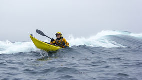 MENDOCINO, CALIFORNIA, USA - JUNE 8. Kayaker paddle open coast o Stock Photo