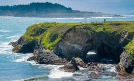 Mendocino Headlands Sink Hole Royalty Free Stock Image