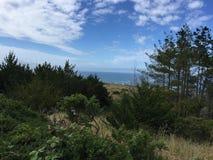Mendocino kust Fotografering för Bildbyråer