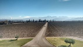 Mendoza阿根廷酒乡 免版税库存图片