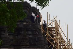 Mendut寺庙改善 库存图片