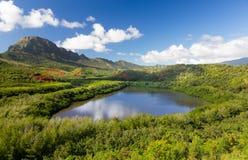 Menehune fishpond Kauai Hawaii. Traditional hawaiian fish pond known as Menehune or Alekoko near Lihue on Kauai in Hawaii Stock Images