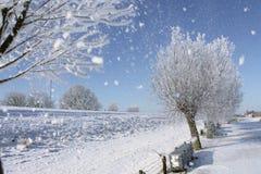 Menge des Schnees Stockbild