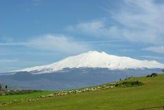 Menge und Vulkan Ätna im Hintergrund Lizenzfreies Stockfoto