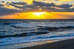 Menge von Abstreicheisen über dem Ozean lizenzfreies stockfoto