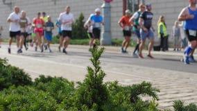 Menge von den Athleten, die am Marathon im Hintergrund laufen stock footage