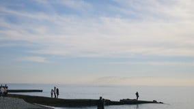 Menge von den Seemöwen, die oben von der Küste fliegen stock video