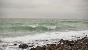 Menge von den Vögeln, die über das stürmische Meer niedrigen langsamen MOs fliegen stock video