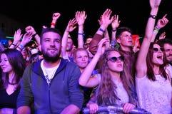 Menge von partying Leuten während eines Konzerts Stockfotos