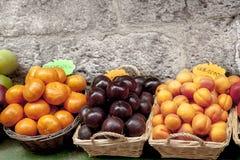 Mengeling van clementinespluimen en abricots Royalty-vrije Stock Foto's