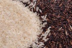 Mengeling van jusminrijst en riceberry rijst Stock Foto