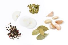 Mengeling van kruiden van ui, laurierblad, koriander, knoflook, zwarte peper op een witte achtergrond stock foto