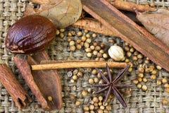 Mengeling van kruidkaneel en Steranijsplant op zak Stock Fotografie