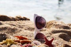 Mengeling van levendige zeesterren op het strand en de vrouwelijke zonnebril Royalty-vrije Stock Afbeeldingen