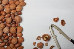 Mengeling van noten op witte achtergrond Stock Fotografie