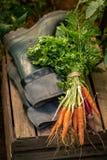 Mengeling van smakelijke groenten en oud groen rubber goed royalty-vrije stock fotografie