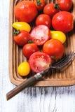 Mengeling van tomaten Stock Foto's
