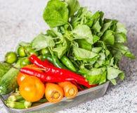 Mengelings Tropische Groenten II Stock Afbeeldingen