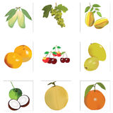 Mengelingsfruit Stock Fotografie
