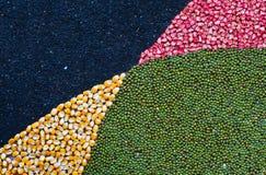 Mengsel van zaden backgound Stock Afbeeldingen