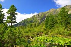 Mengusovska Valley in High Tatras, Slovakia Royalty Free Stock Photography