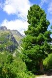 Mengusovska Valley, Vysoke Tatry (High Tatras), Slovakia Stock Images