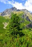 Mengusovska Valley in Vysoke Tatry (High Tatras), Slovakia Royalty Free Stock Photos