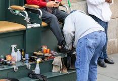 Menhaden de chaussure dans NY Photographie stock