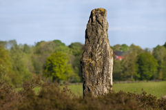 Menhir Stock Photography