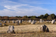 Menhir alignment in carnac Royalty Free Stock Photography