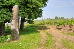 Menhir autour d'Eckelsheim Rheinhessen Allemagne Photo libre de droits