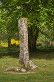 Menhir mince aux cairns préhistoriques de Clava photo stock