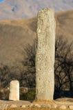 Menhir ou pierre gravée Photo libre de droits