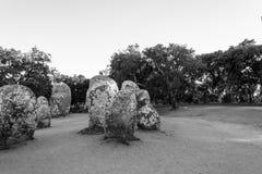 Menhires en un cromlech cerca de Evora en Portugal Imagen de archivo libre de regalías