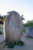 Menhires en un cromlech cerca de Evora en Portugal Imágenes de archivo libres de regalías