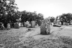 Menhires en un cromlech cerca de Evora en Portugal Imagen de archivo