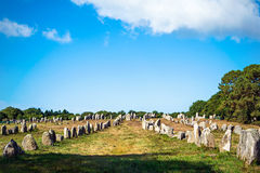 Menhirs alignment. in Carnac, Britain, France Royalty Free Stock Images