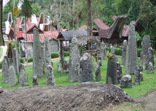 Menhirs at Bori Parinding Tana Toraja Royalty Free Stock Photo