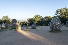 Menhirs in a cromlech close to Evora in Portugal Royalty Free Stock Images