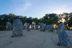 Menhirs in a cromlech close to Evora in Portugal Stock Images