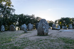 Menhirs in a cromlech close to Evora in Portugal Royalty Free Stock Photos