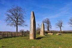 Menhirs d Epoigny dans les Frances Photo stock