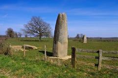 Menhirs d Epoigny dans les Frances Images stock