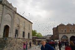 Menigte en het vliegen pegions buiten de moskee in Egypte wordt gevestigd dat Stock Foto's