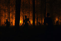 Menigte van hongerige zombieën in het hout royalty-vrije stock foto