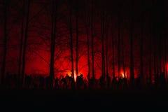 Menigte van hongerige zombieën in het hout royalty-vrije stock afbeelding