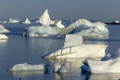 Menigte van ijsbergen, Fogo-Eiland Stock Foto