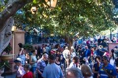 Menigten in lijn in Disneyland stock foto